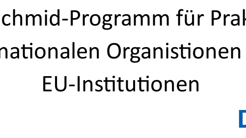 [Translate to English:] Carlo-Schmid-Programm für Praktika in internationalen Organisationen und EU-Institutionen
