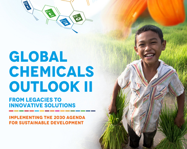 Poster Global Chemicals Outlook II